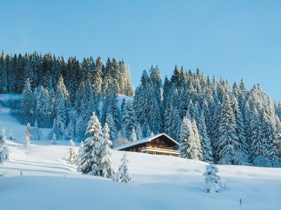 Berghuette Winter g