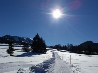 Winterspaziergang bei Kornau