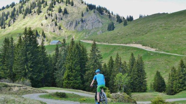 Attraktives Mountainbike Gebiet