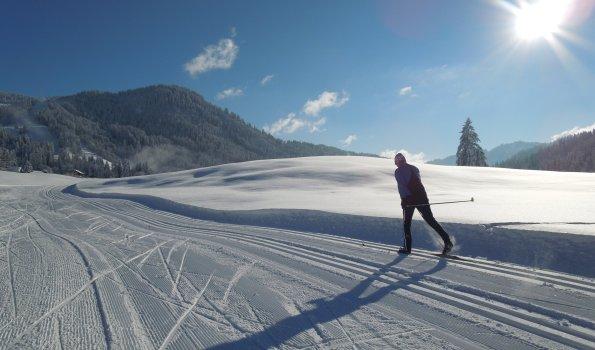 Skilanglauflehrer