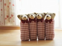 Hausbären