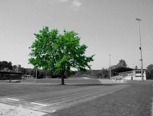 Baum BW G 2