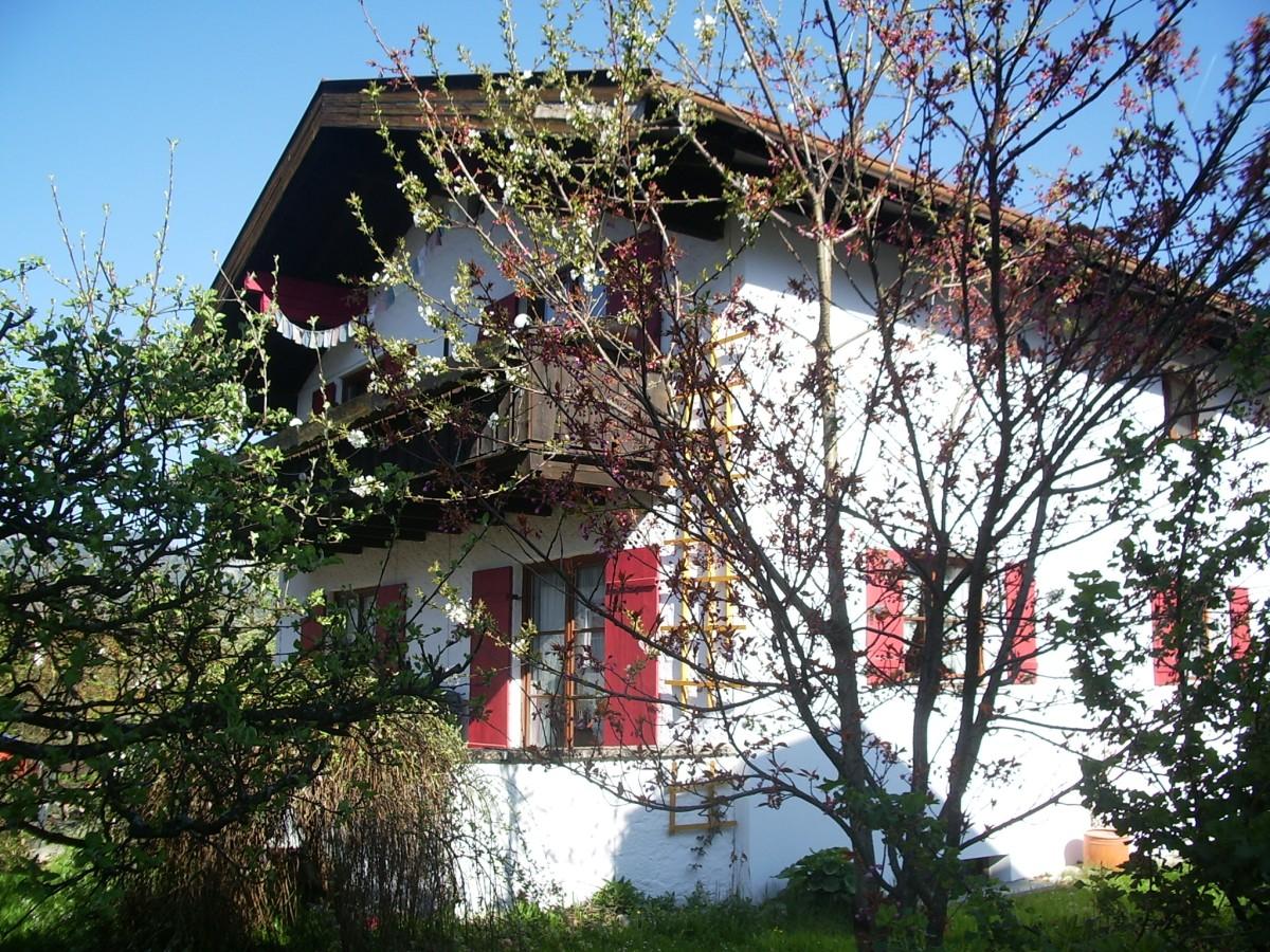 Blüte in Oberstdorf