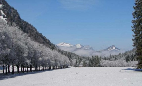 Winterzauber im Oytal