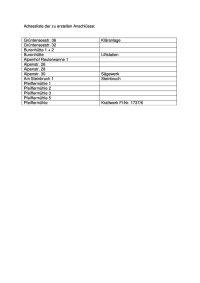 Adressliste der zu erstellen Anschlüsse