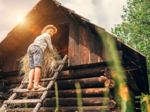 Mein erstes Holzhaus