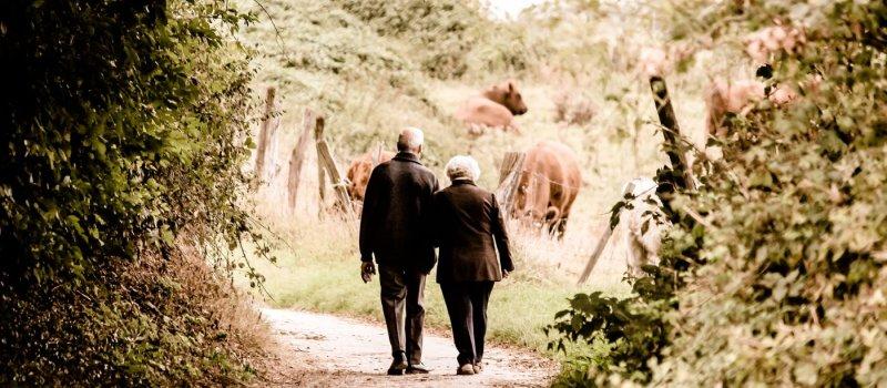 Hilfe für Senioren in Not