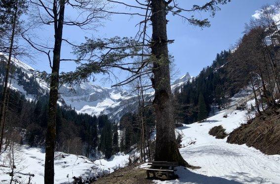 Skitour Allgäu Panorama Gr. Wilder