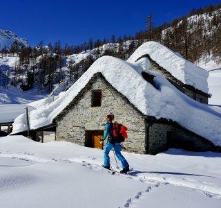Alpe di Sfii, auf dem Weg zum Pizzo del Lago Gelatto, Val Maggia, Schweiz