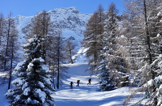 Winter Wunderland, Airolo, Schweiz