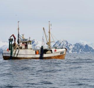 Skitouren Lofoten - Ausflug zum Fischen