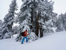 Skitour auf Dautov, 2.597 м, Pirin Gebirge, Bulgarien
