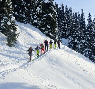 Skitourengruppe im Aufstieg, gute Spur und flaches Gelände