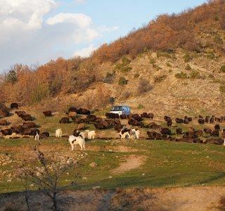 Bulgarien Wandern - 16 von 16
