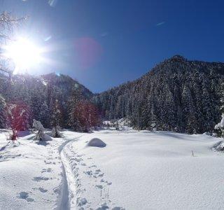 Winterlandschaft mit Skispur im Valle Stura
