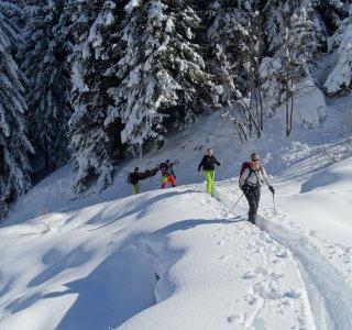 Valle Stura, Skitourengruppe im Aufstieg