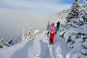 Skitouren für Einsteiger, Skitour nach Neuschnee