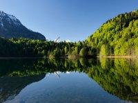 Monschau Freibergsee groß -Frühling klein