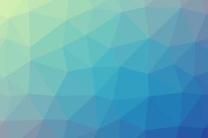 Polygonraster