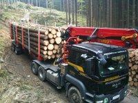 Neuhauser Holztransporte 1