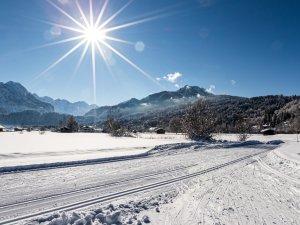 Winter 2021-9270