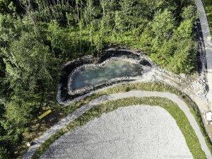 Amphibienlaichgewässer von oben