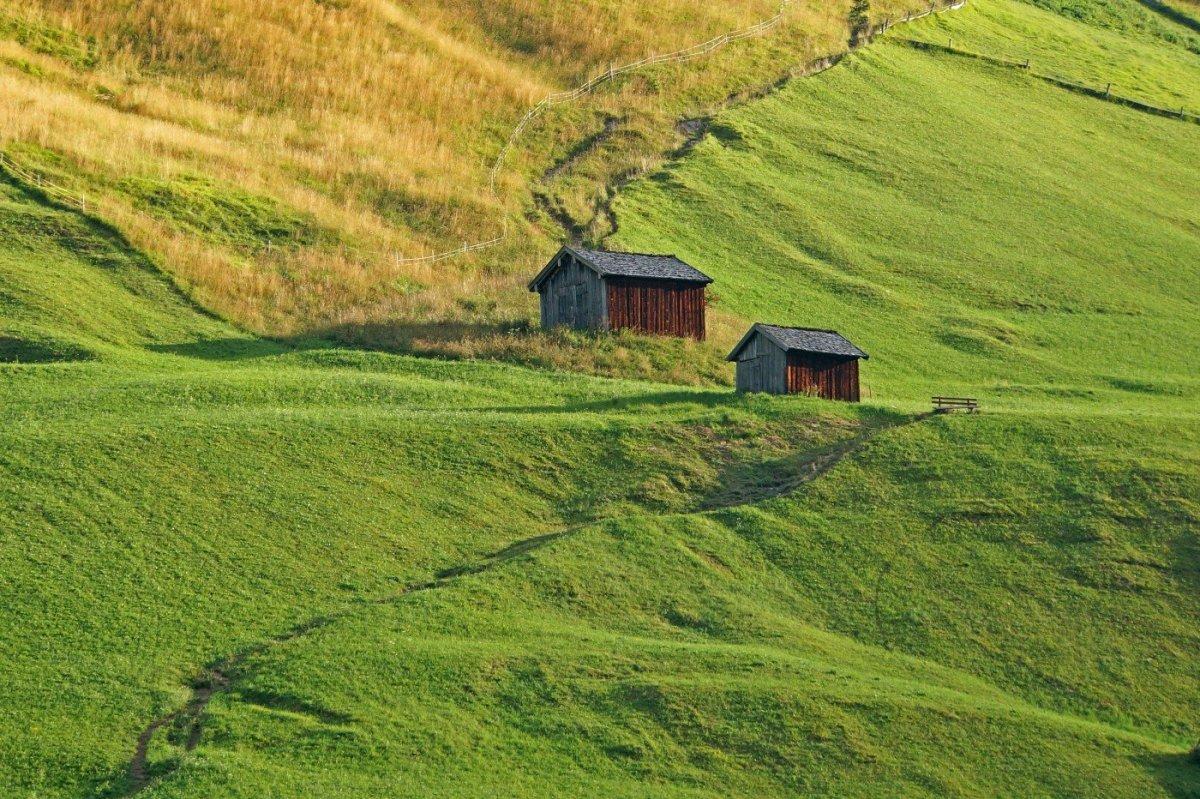 3. Tag - Vorbei an saftigen Wiesen fahren wir mit dem Bus nach Kaisers (1.518 m)