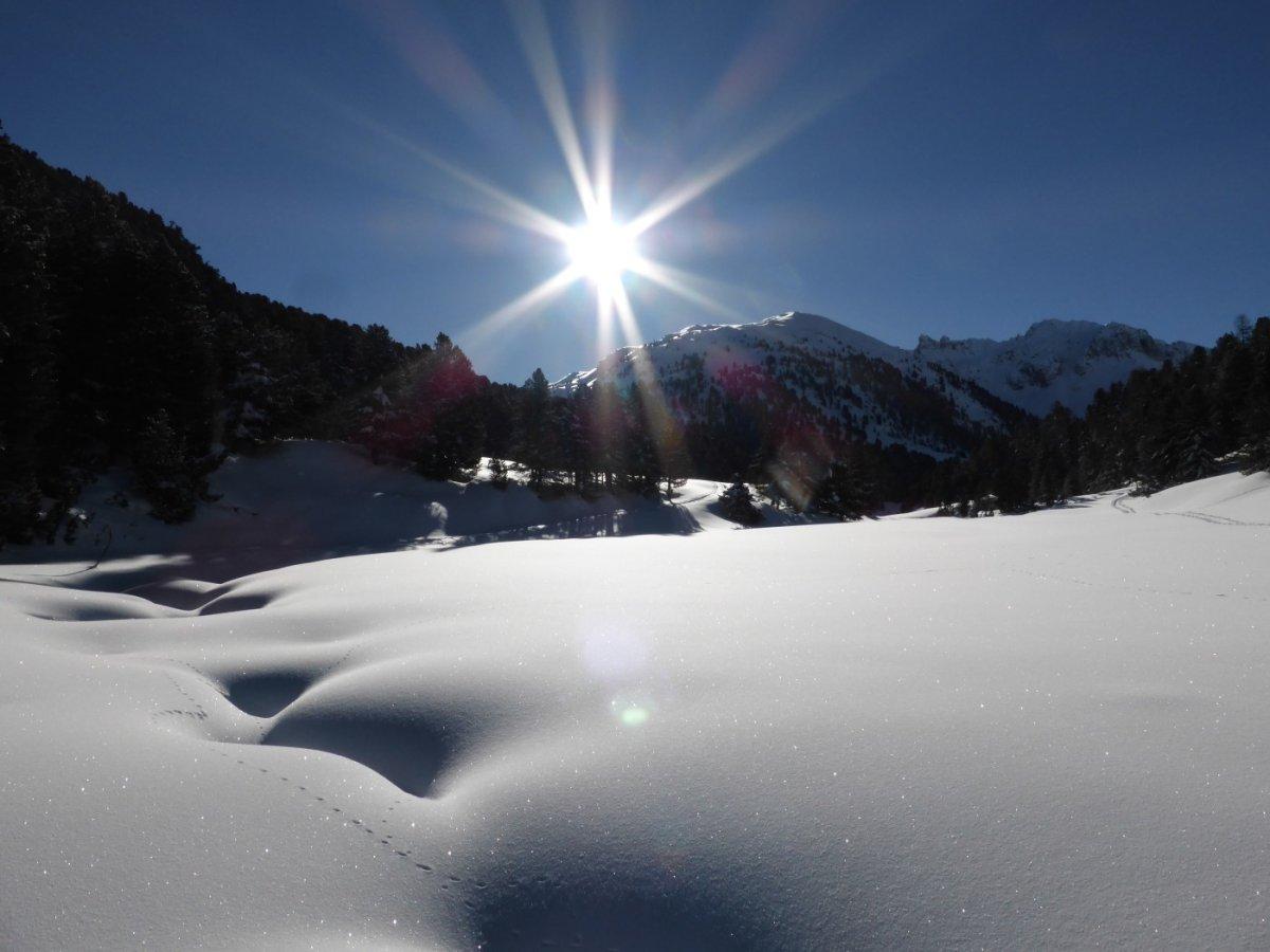 5.Tag - Grandiose Winterlandschaft im Val S-charl, im Hintergrund der Mot Falain