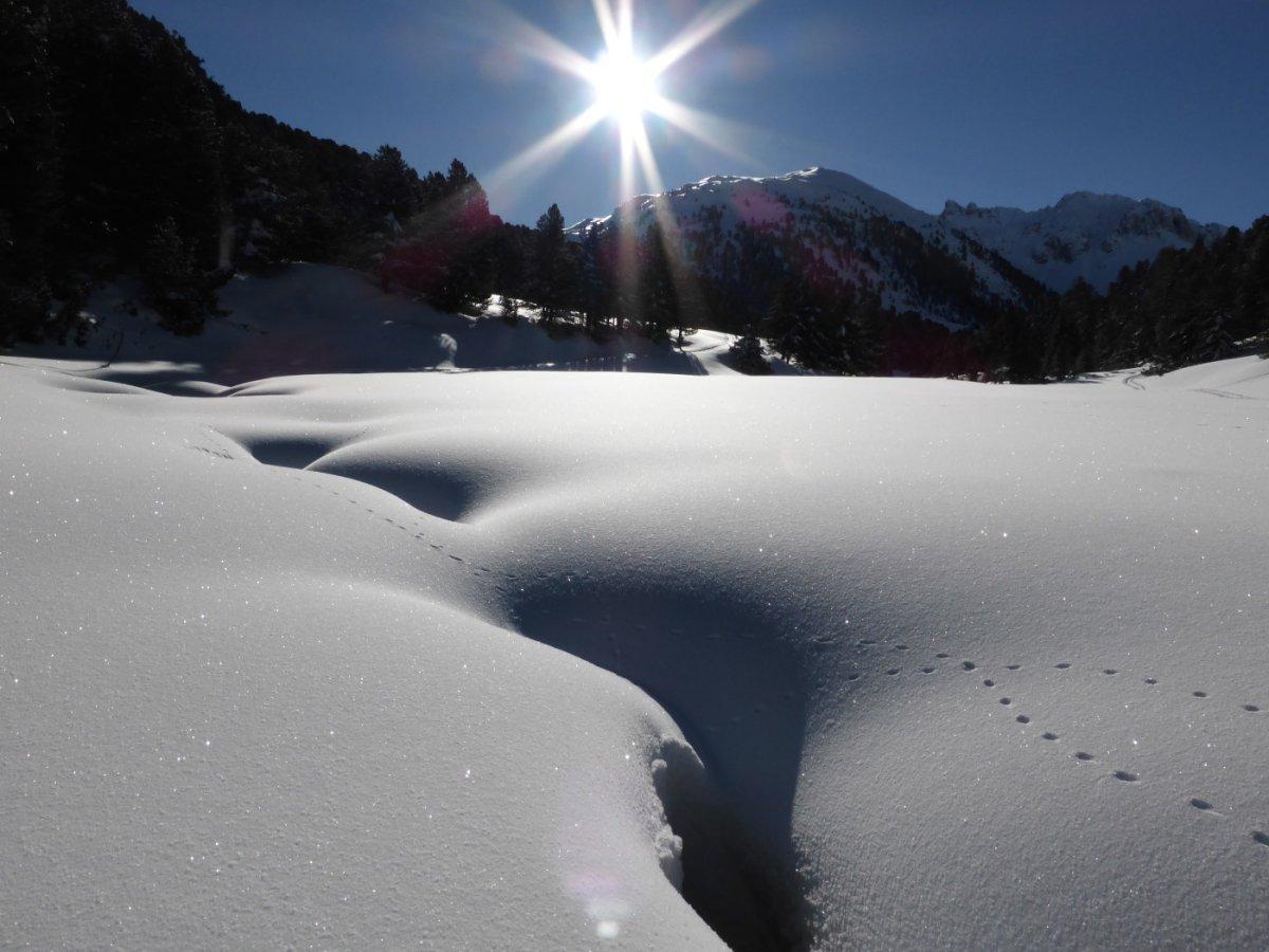 6. Tag - Traumhafte Winterstimmung am frühen Morgen vor dem Aufstieg zum S-charl Joch