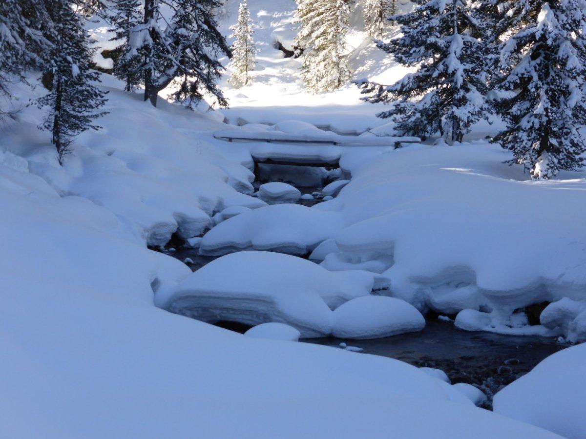 6. Tag - Zunächst führt unser Weg flach durchs tief verschneite Val S-charl