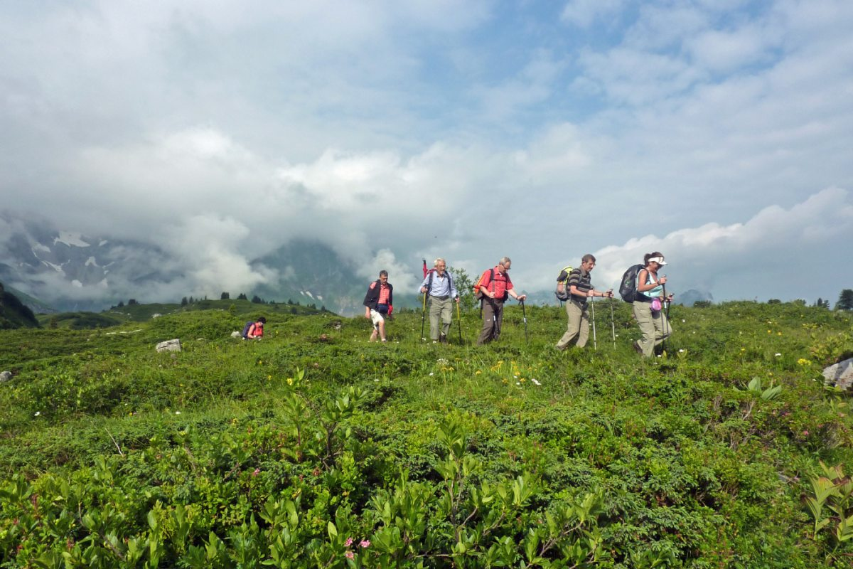 2. Tag - Durch üppige Vegetation und über schmale Wege wandern wir mit leichtem Tagesrucksack Richtung Auenfeldsattel