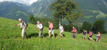 6. Tag - Im Gleichschritt wandern wir über saftige Wiesen zur Pfandleralm