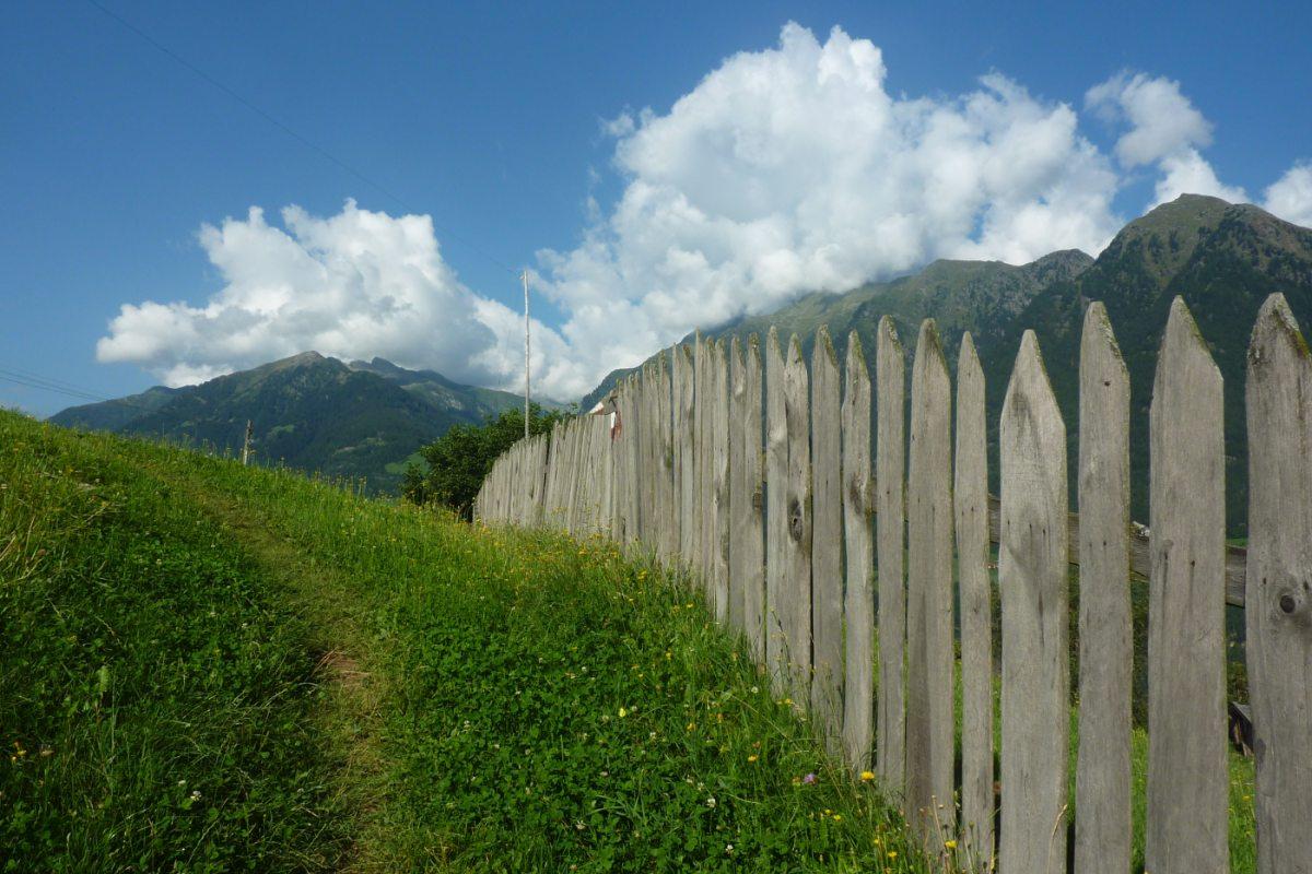 6. Tag - Zunächst geht es mit dem Taxi zum Pfandlerhof, über schöne Almwiesen wandern wir weiter zur Pfandleralm