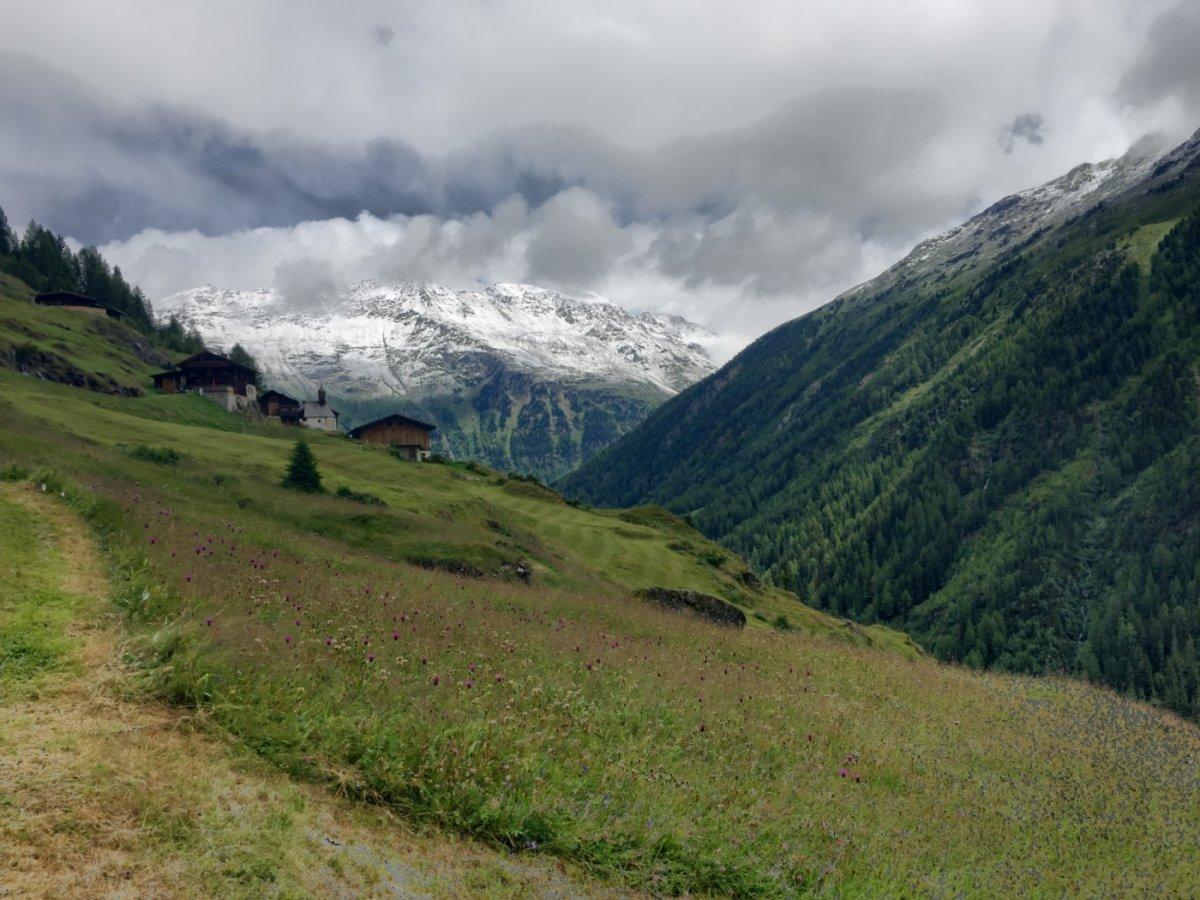 4. Tag - Am Nachmittag wandern wir über die Gaislachalm hinunter nach Zwieselstein (1.472 m) im Ötztal