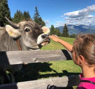 Urlaub am Oberpalwitterhof (2)