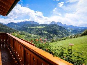Goldmelisse Balkon