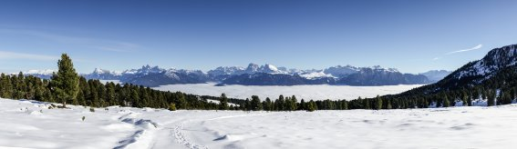Dolomiten Winterpanorama