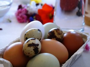 Frühstücksangebot Eier