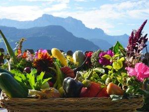 Gartenfrüchte (3)