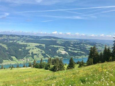 Alpseeblick oberhalb Starkatsgund