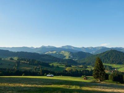 Oberstaufen- Panorama Nagelfluhkette und Hochgrat