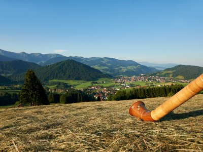 Oberstaufen-Panorama Ort