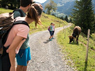 Familienwandern am Imberg bei Oberstaufen