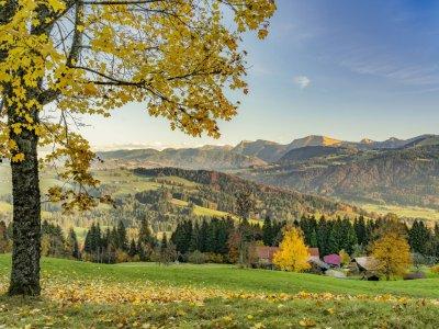 Herbst in Oberstaufen mit Ausblick auf die Nagelfluhkette