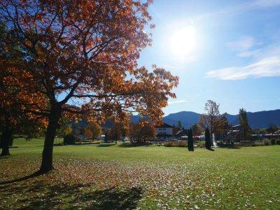 Herbststimmung im Oberstaufen PARK