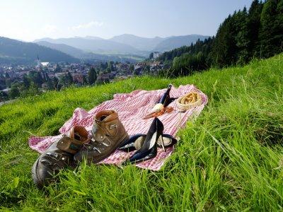 Picknick vor Alpenpanorama