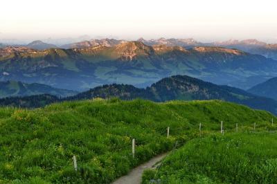 Blick vom Hochgrat in die Alpen