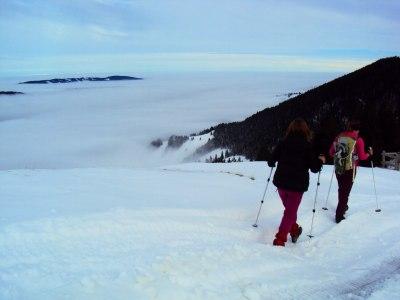 Nebelmeer in den Tallagen
