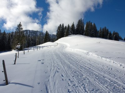 Befestigter Winterwanderweg