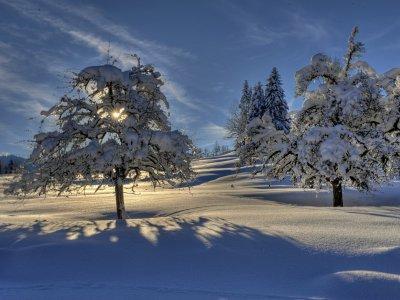 Winterwandern in Oberstaufen